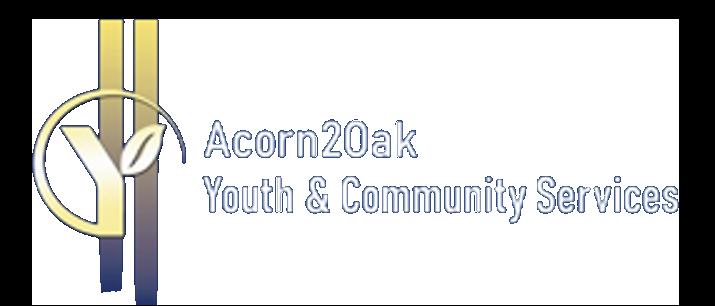 A2O logo good